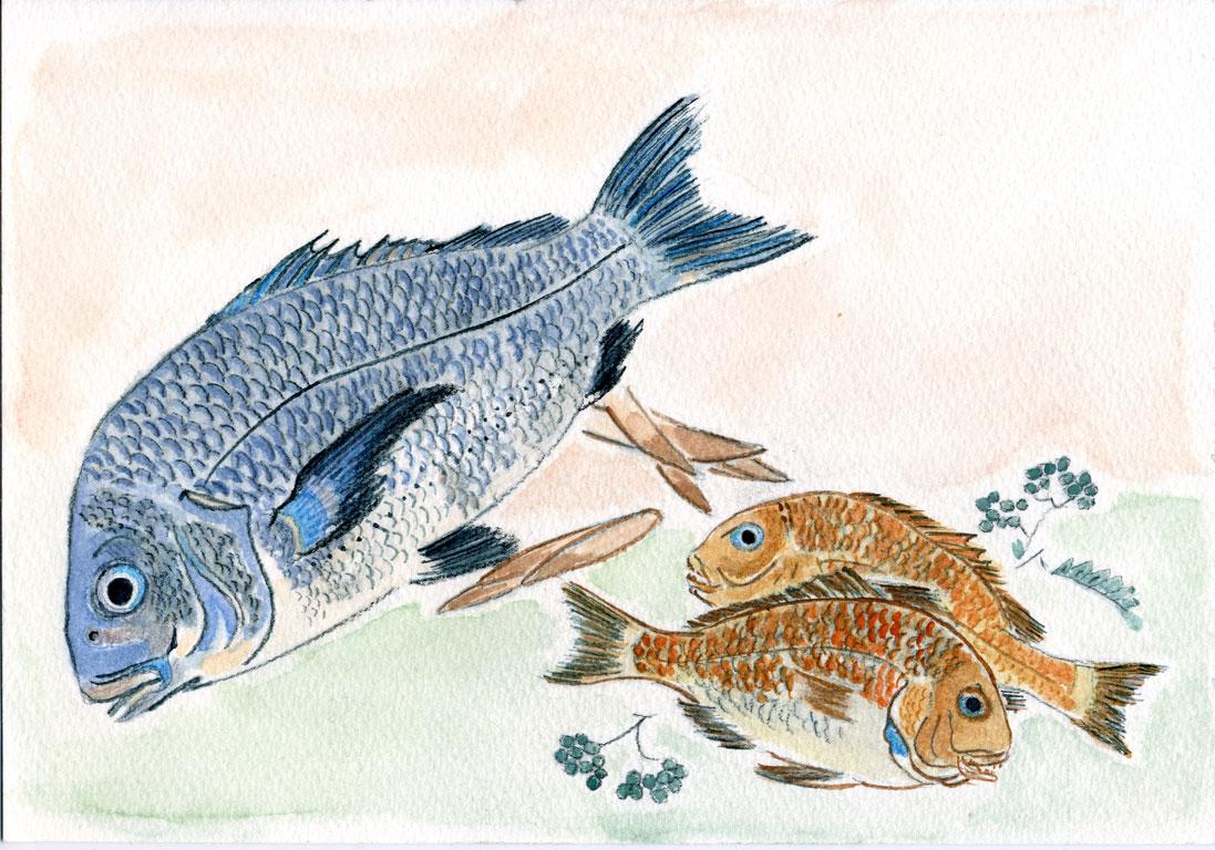 Kurodai and Kodai Fish with Bamboo Shoots and Berries