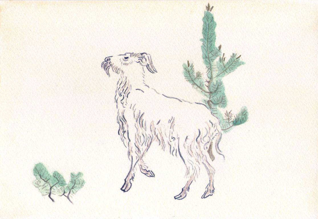 Goat   by Ogata Gekko,