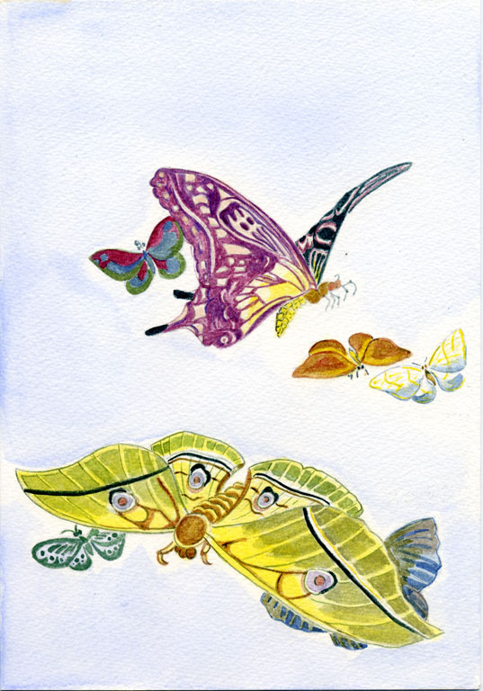 Various Moths and Butterflies by Kubo Shunman