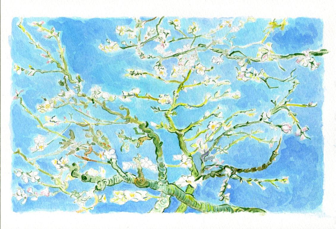 Almon Blossom - Van Gogh